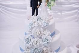 Alex & Sherree's Wedding img_3655
