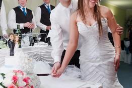 Alex & Sherree's Wedding img_3739