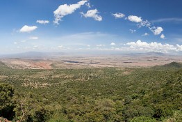 Masai Mara NP, Kenya img_7382_3_4_5_6_7_8_9_90
