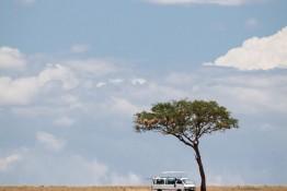 Masai Mara NP, Kenya img_7908