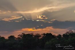 Kafue NP, Zambia img_8996