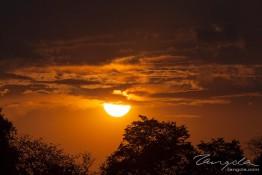 Kafue NP, Zambia img_9003