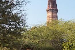 Delhi, India nv0a6783