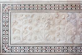 Agra, India nv0a6899