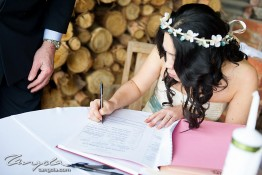 Craig & Samantha's Wedding dsc_0087