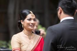 Gaurav & Roshni's Wedding 1j4c1546