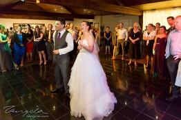 Matt & Jamie's Wedding nv0a8076