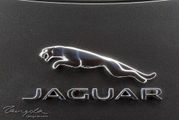 Jaguar F-Type R 1j4c3524