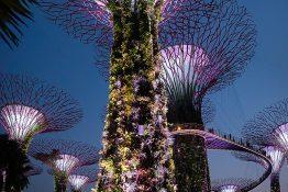Singapore tngf2733-pano