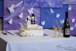Gavin & Amethyst's Wedding tng_2178