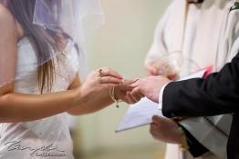 Alex & Sherree's Wedding tng_2745