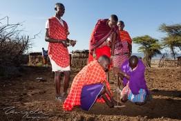 Masai Mara NP, Kenya img_8214
