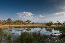 Kafue NP, Zambia img_9546