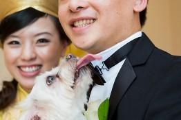 Tony & Julie's Wedding nv0a2256