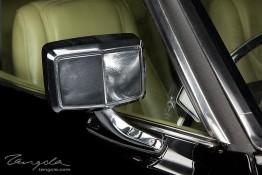 Ford Landau nv0a6490