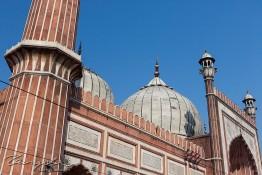 Delhi, India nv0a6611
