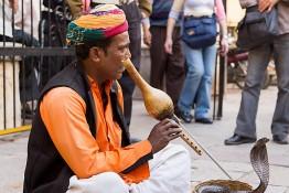 Jaipur, India nv0a7648