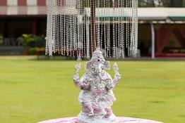 Bhumit & Aneesha's Wedding, India nv0a7778