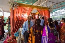 Bhumit & Aneesha's Wedding, India nv0a8014