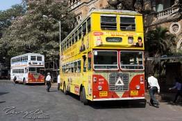 Mumbai, India nv0a8696