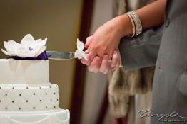 Anthelme & Susanne's Wedding 1j4c7937