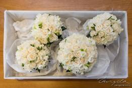 Craig & Samantha's Wedding nv0a8577
