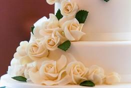 Jeremy & Bonny's Wedding nv0a9045