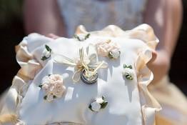 Jeremy & Bonny's Wedding nv0a9083