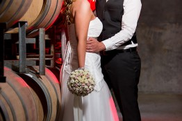 Aaron & Anna's Wedding 1j4c3067
