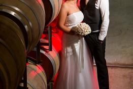 Aaron & Anna's Wedding 1j4c3080
