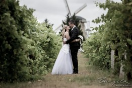 Aaron & Anna's Wedding 1j4c3133