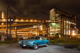Mustang Owners Club Wollongong Shoot 1j4c6681