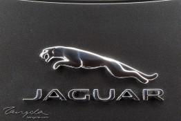 Jaguar F-Type R 1j4c3524
