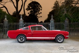 '66 Ford Mustang Shelby GT350 1j4c8434