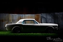 Mustang Owners Club Sydney Shoot 1j4c2179