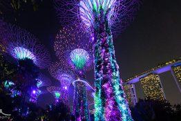 Singapore tngf2860-pano