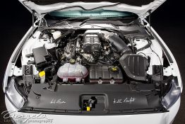Ford Mustang Bathurst 77 Special nv0a2060-2
