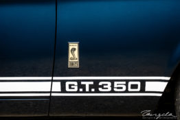 '67 Ford Mustang Shelby GT350 zp204802
